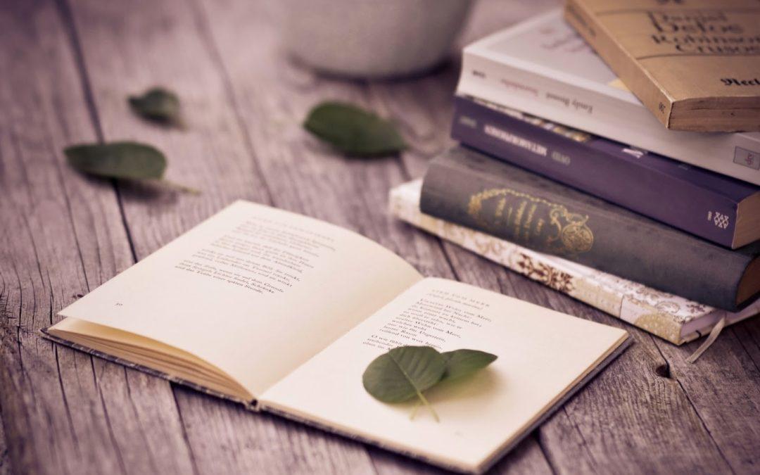 Расскажи о своих литературных талантах!