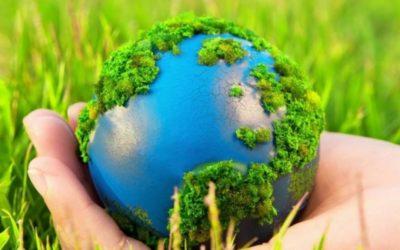 Внимание! Экологический конкурс