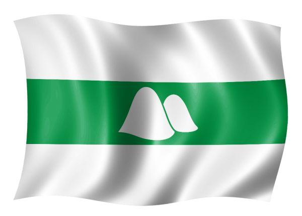 6 февраля – день рождения Курганской области