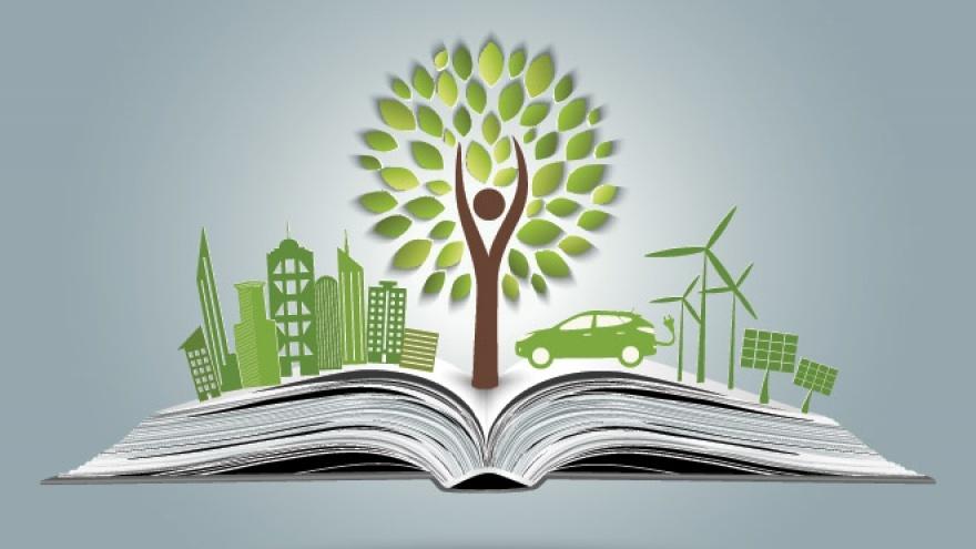 В Зауралье проходит экологический конкурс