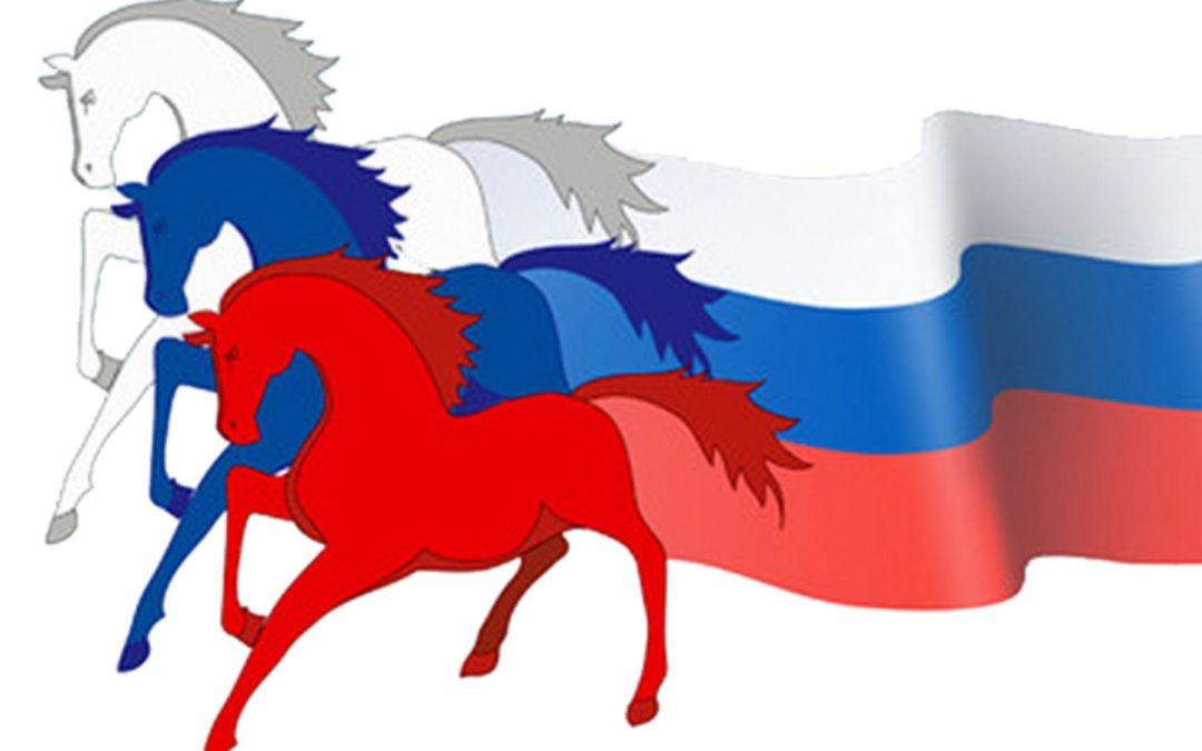 Школьники расскажут о российской и региональной символике