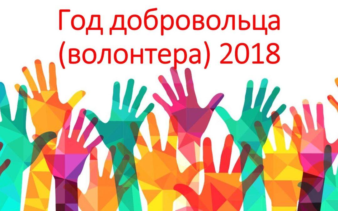 Зауралье получит более 9 млн руб. на развитие добровольчества