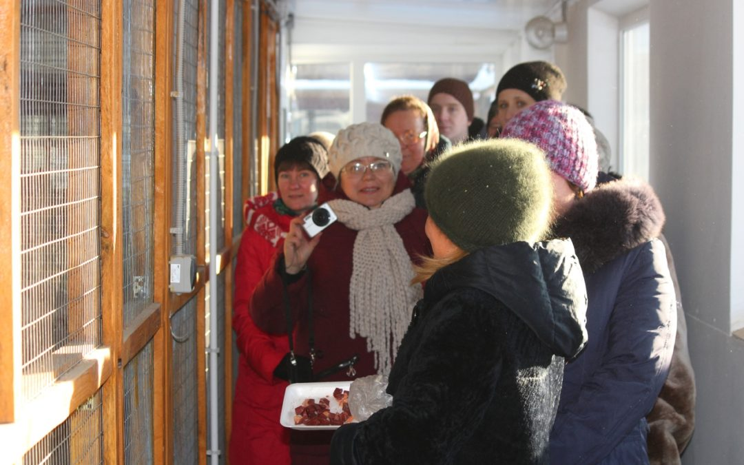 В Кетово представили опыт профориентационного туризма