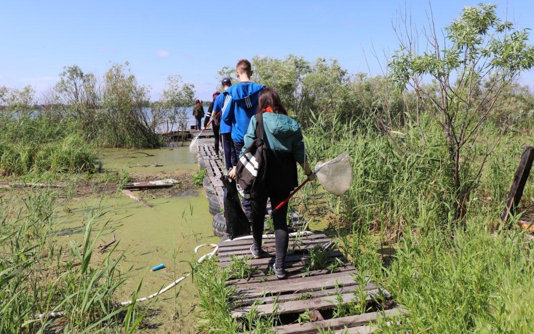 Волонтеров приглашают на экологические акции