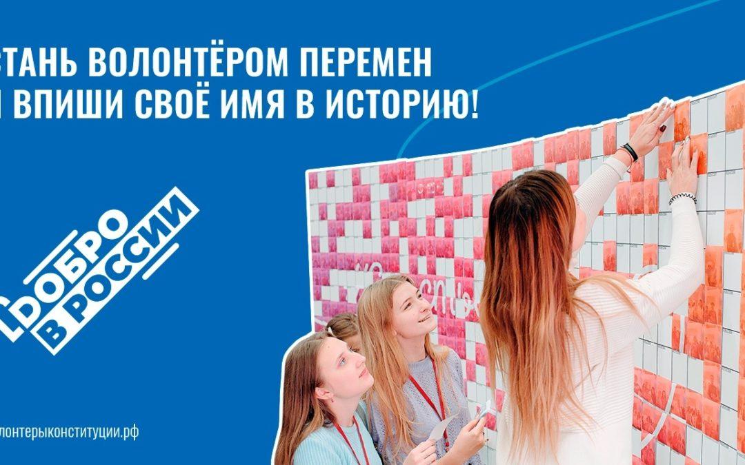Волонтеры Конституции появятся в России