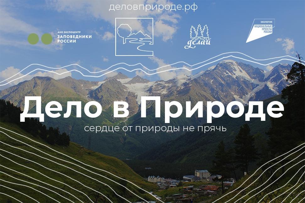 Зауральских экоактивистов приглашают принять участие в проекте «Дело в природе!»