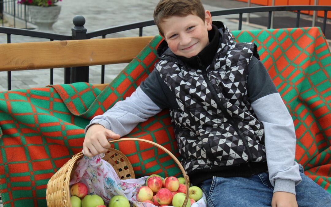 «Яблочный день» прошел в Лебяжье
