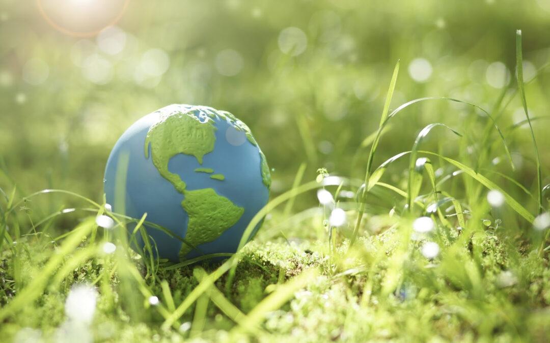 Школьников приглашают на экологический форум